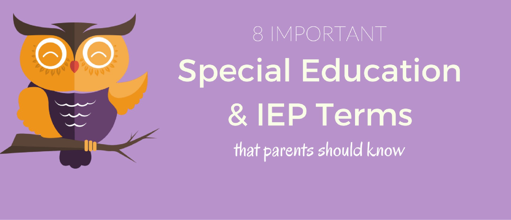 IEP and Special Education Terms